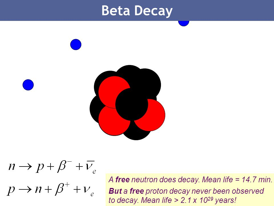 Beta Decay A free neutron does decay. Mean life = 14.7 min.