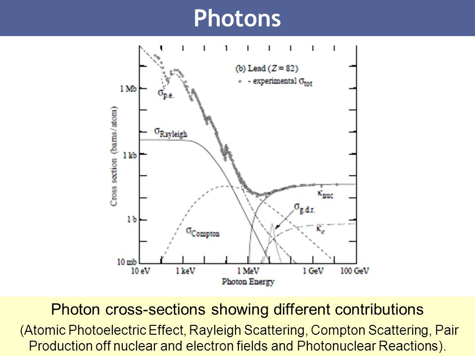 Photon cross-sections showing different contributions
