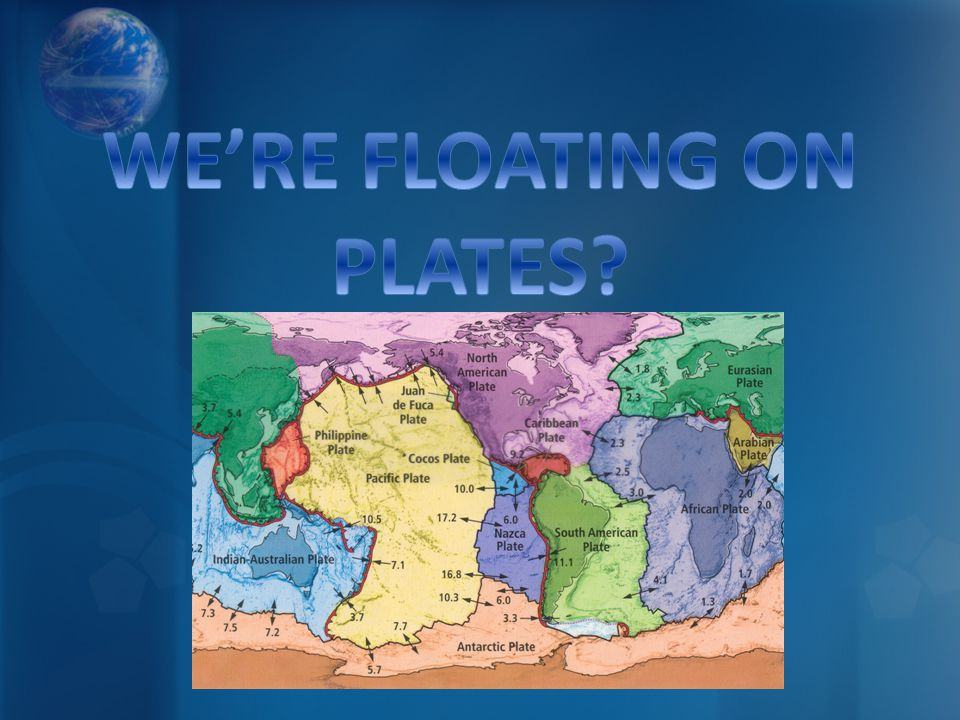 WE'RE FLOATING ON PLATES