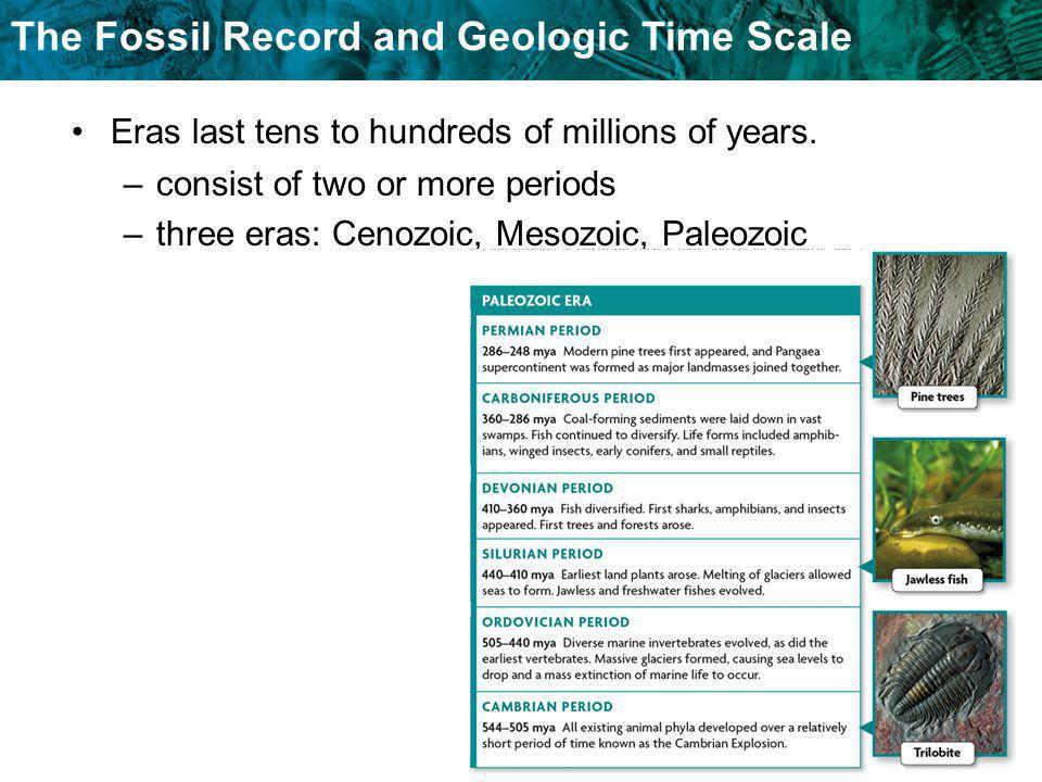 Eras last tens to hundreds of millions of years.