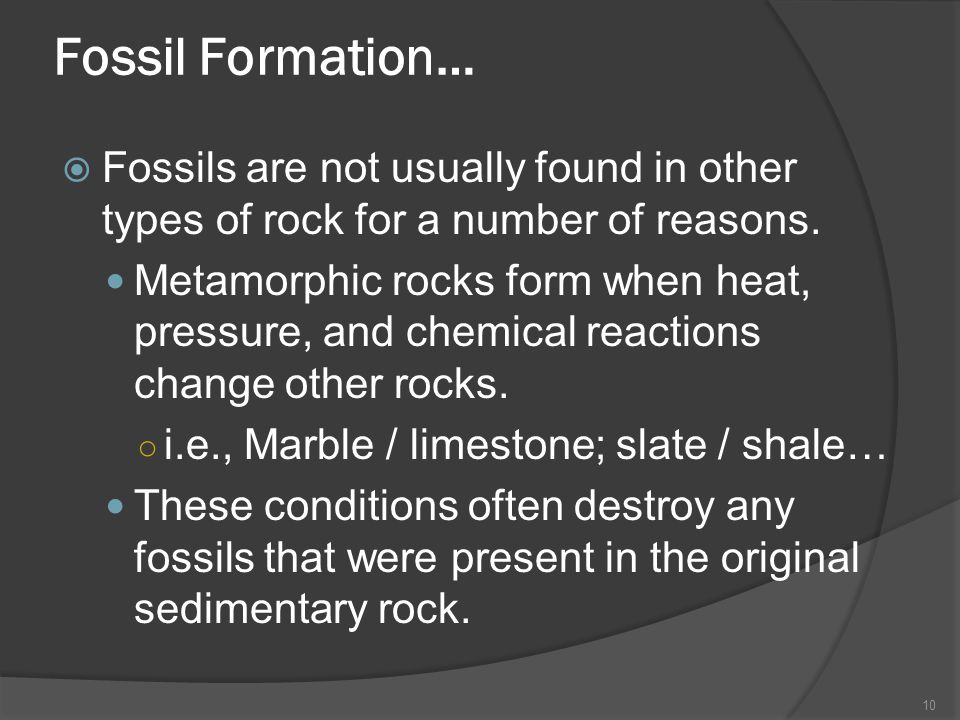 Fossil Formation… Fossils are not usually found in other types of rock for a number of reasons.