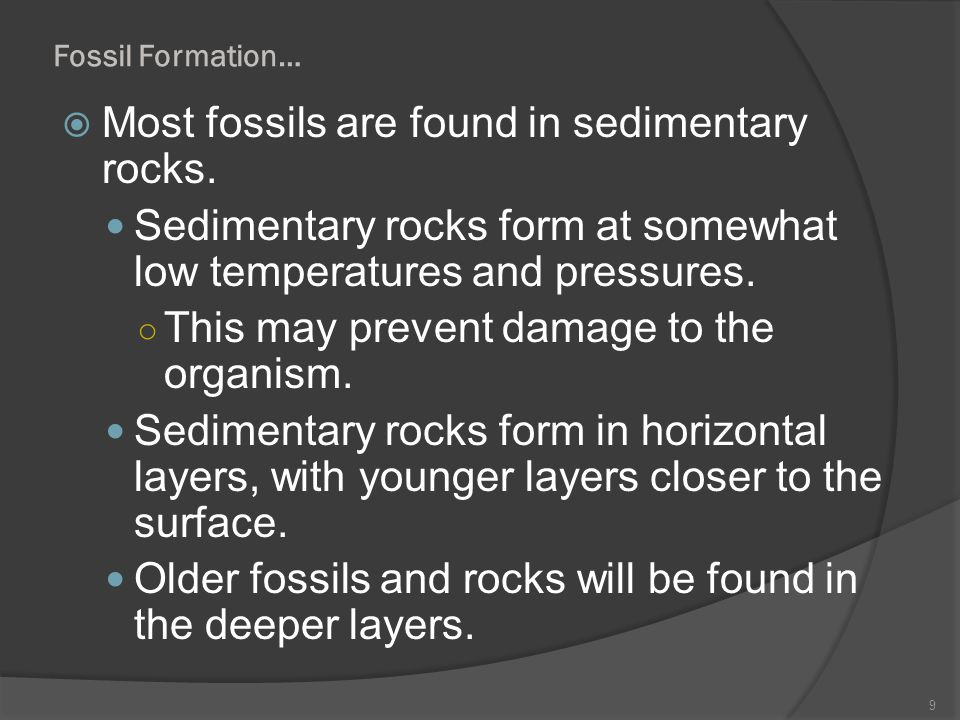Most fossils are found in sedimentary rocks.