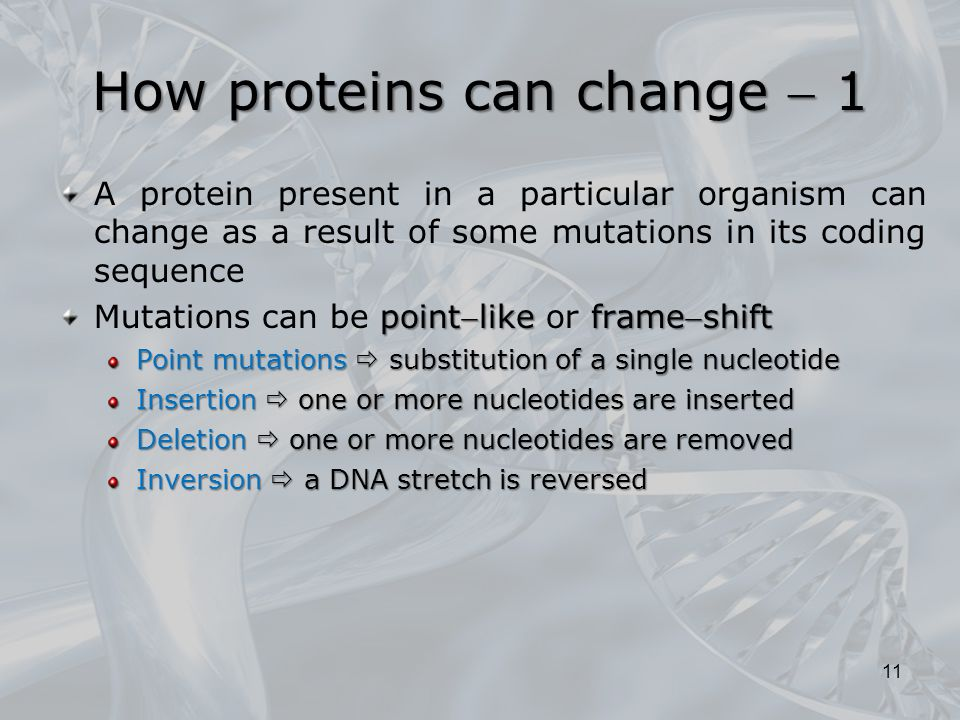 How proteins can change  1