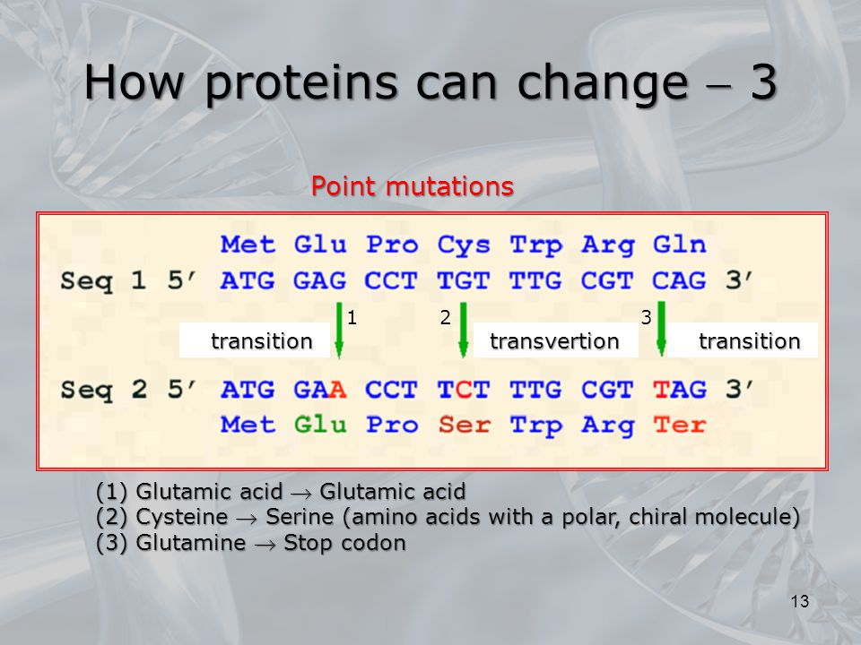 How proteins can change  3