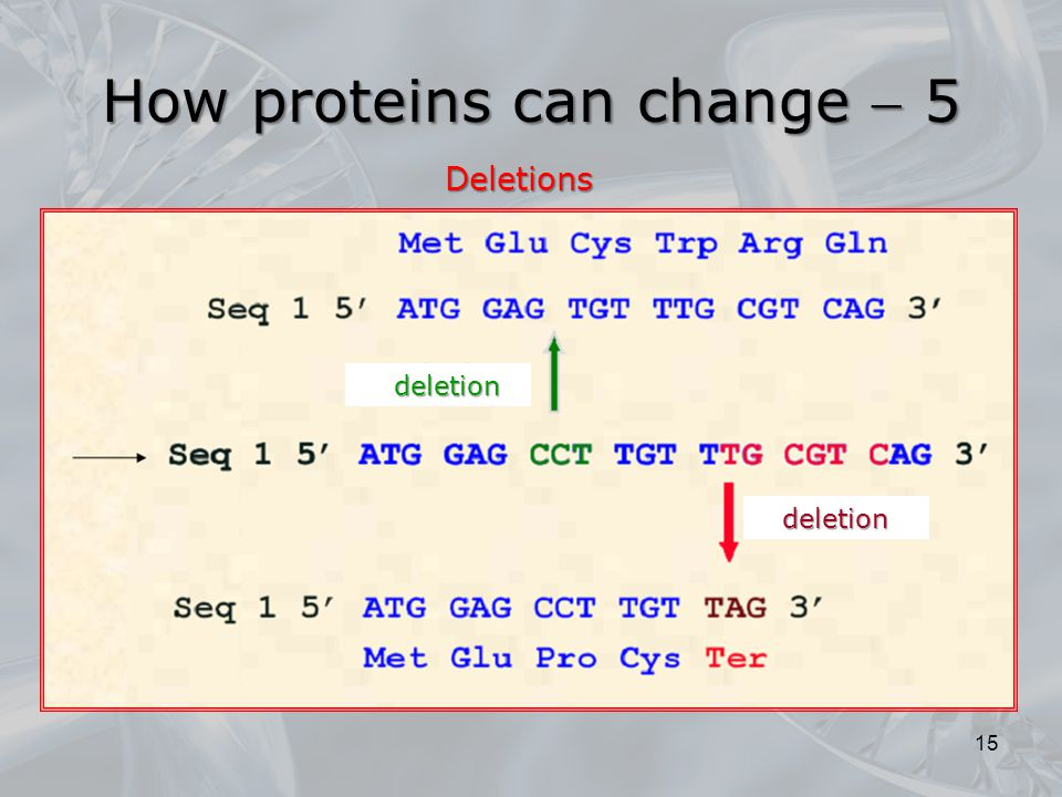 How proteins can change  5