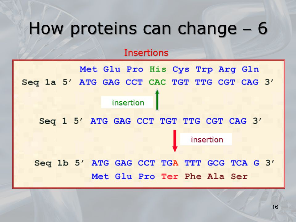 How proteins can change  6