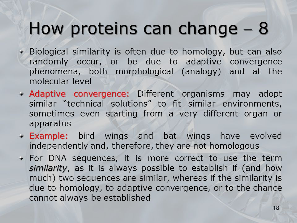 How proteins can change  8