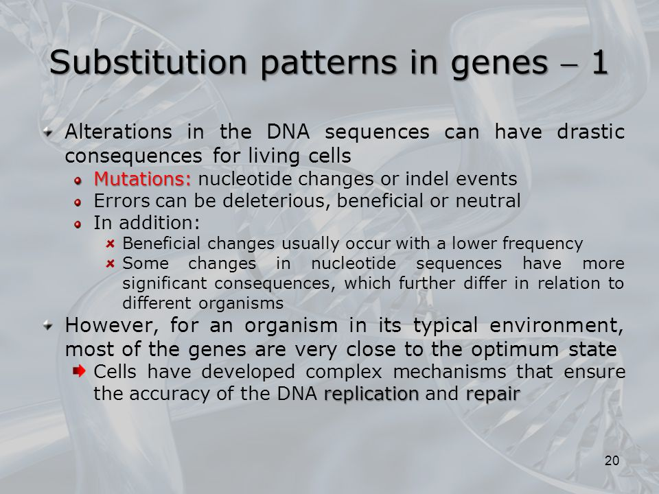 Substitution patterns in genes  1