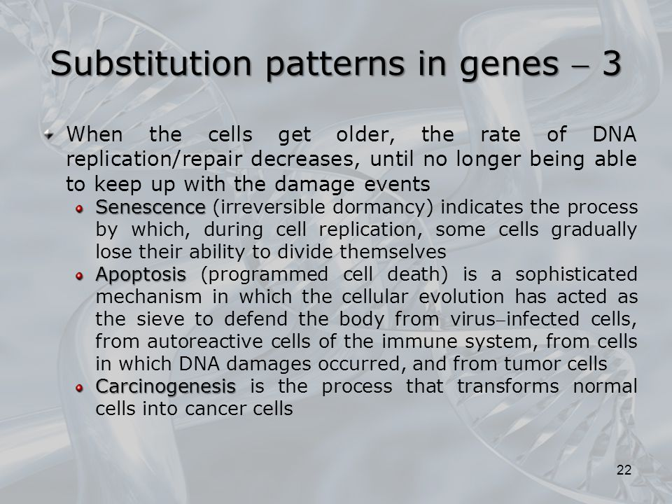 Substitution patterns in genes  3