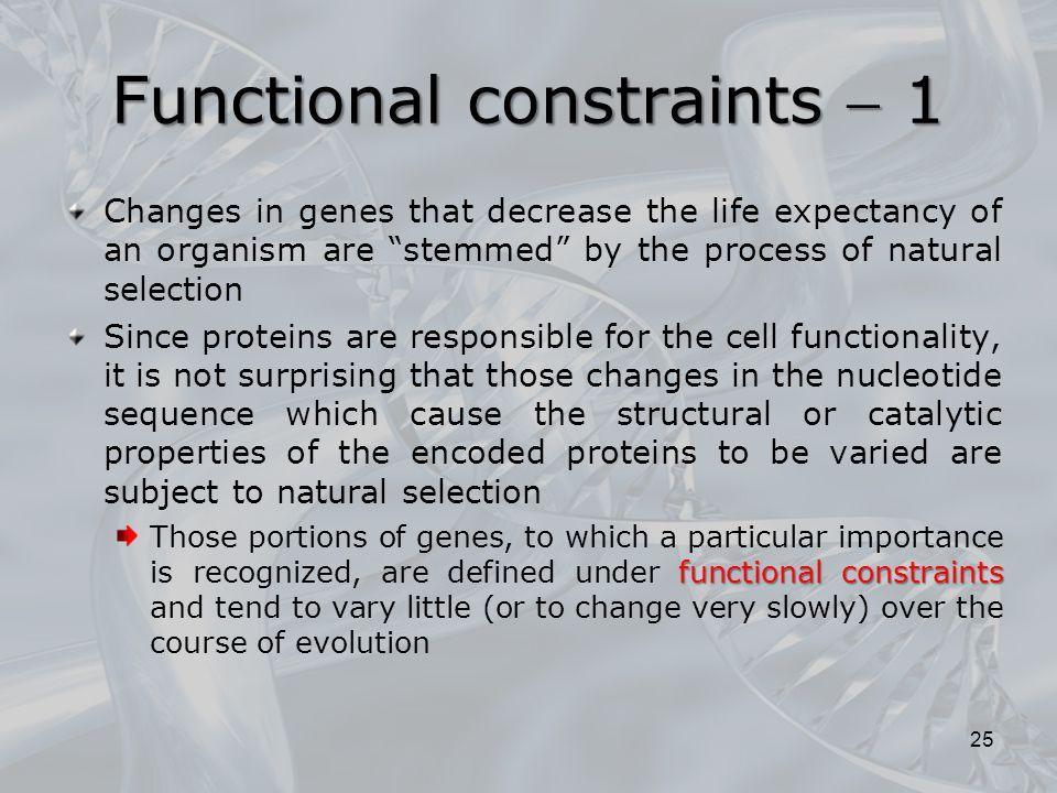 Functional constraints  1