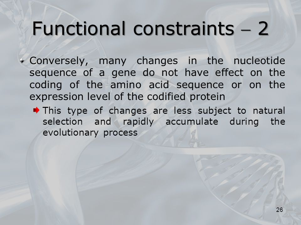Functional constraints  2
