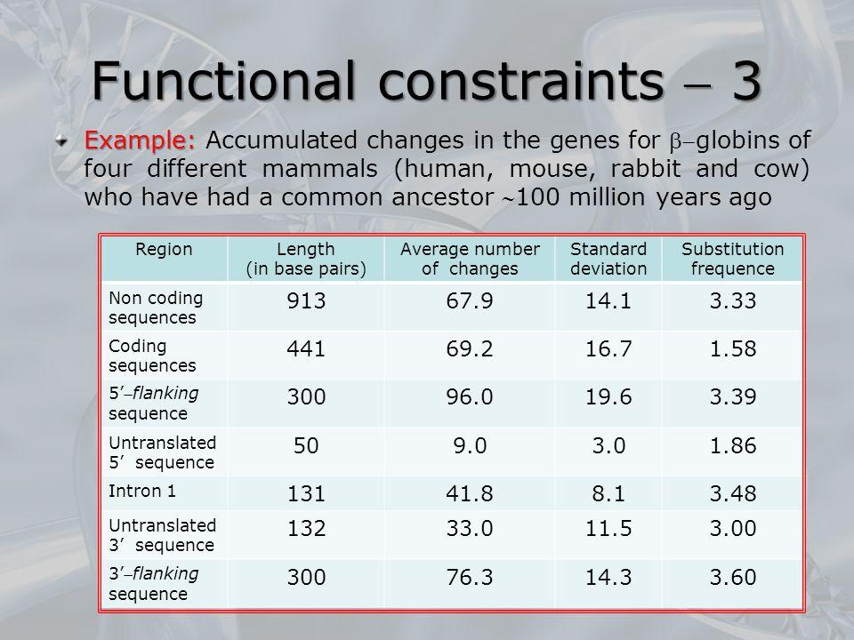 Functional constraints  3