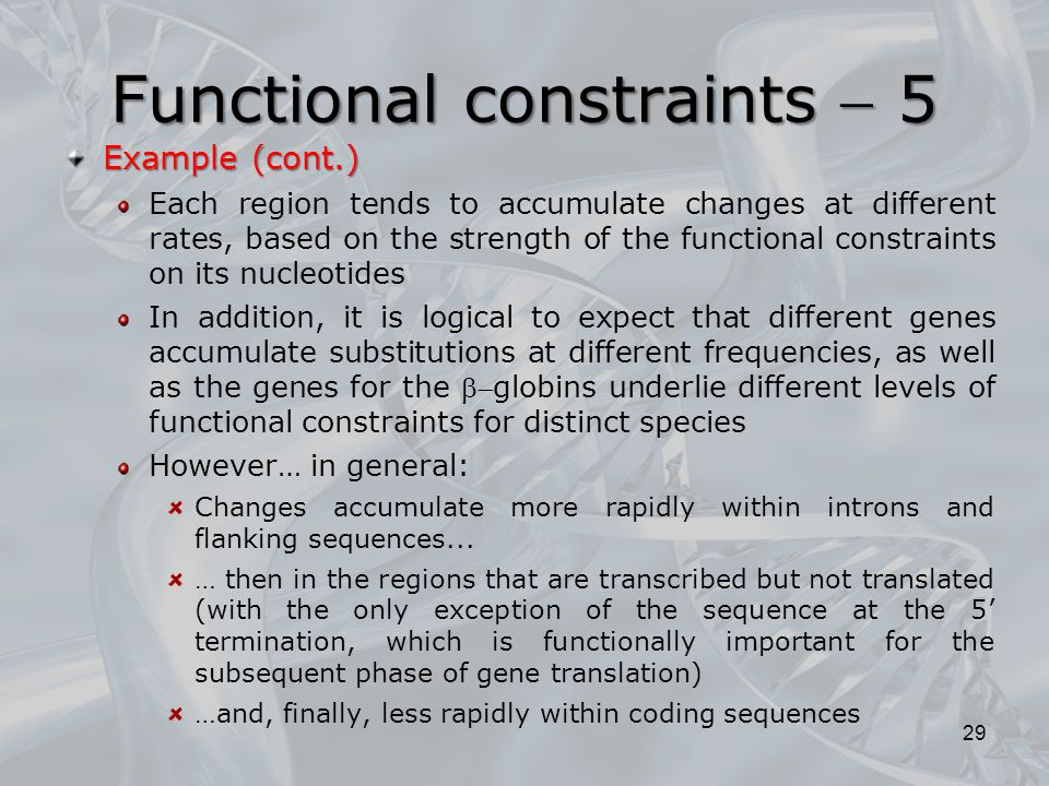 Functional constraints  5