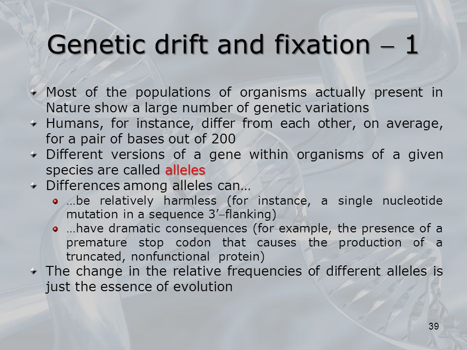 Genetic drift and fixation  1