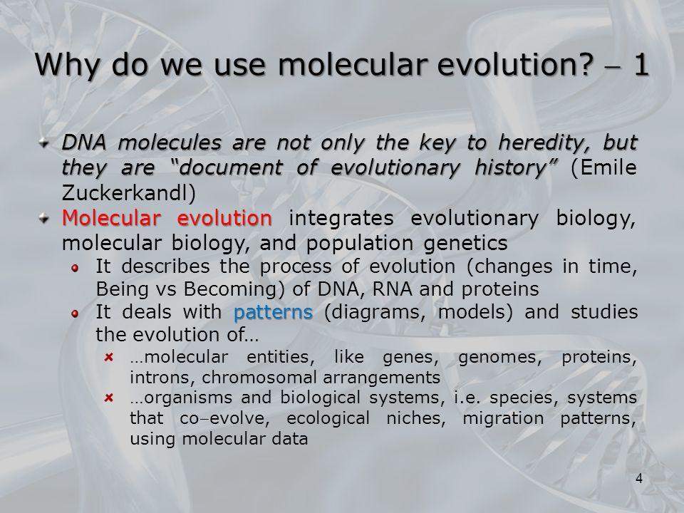 Why do we use molecular evolution  1