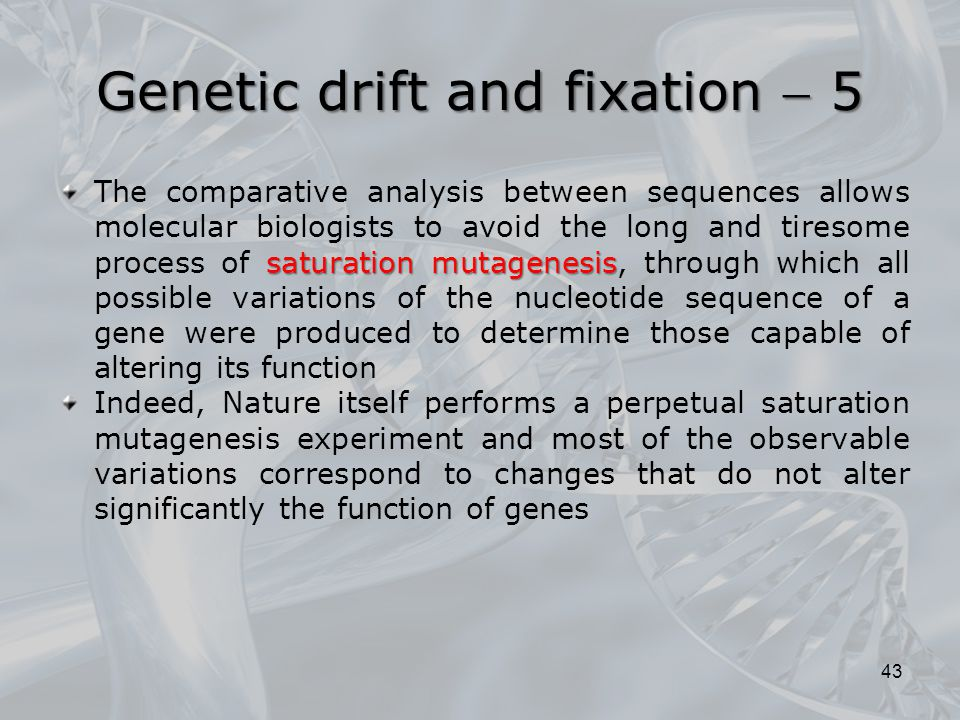 Genetic drift and fixation  5