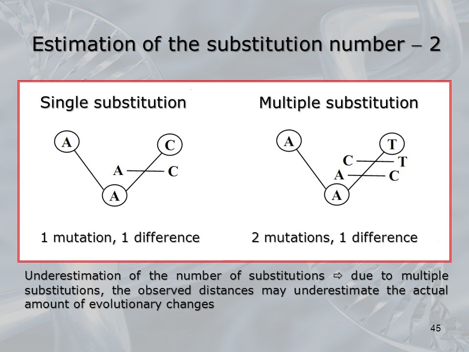 Estimation of the substitution number  2