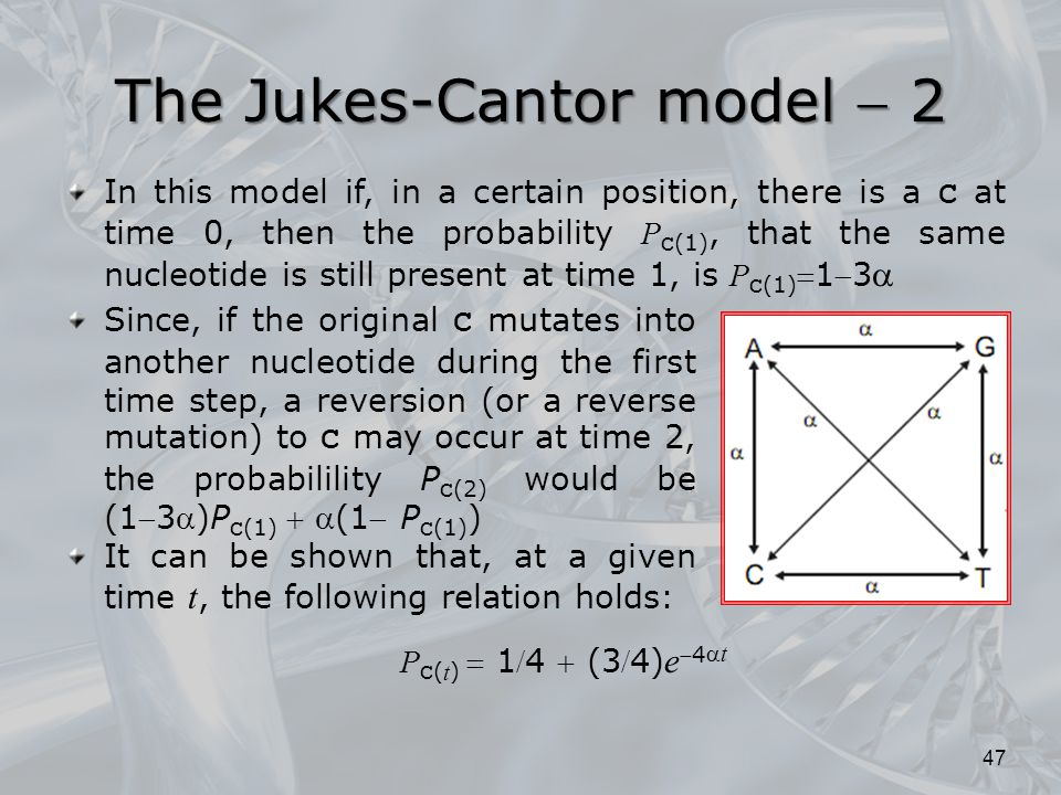 The Jukes-Cantor model  2