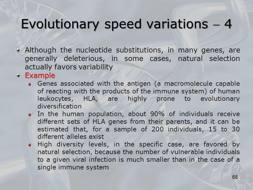 Evolutionary speed variations  4