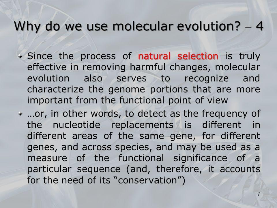 Why do we use molecular evolution  4