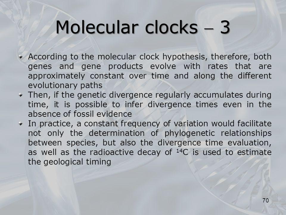 Molecular clocks  3
