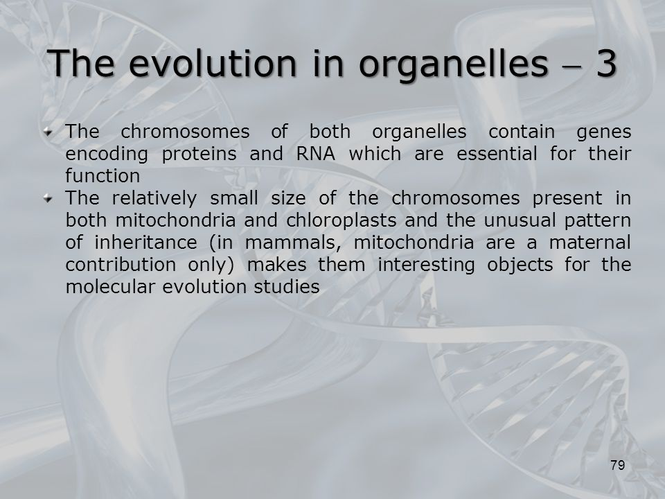 The evolution in organelles  3