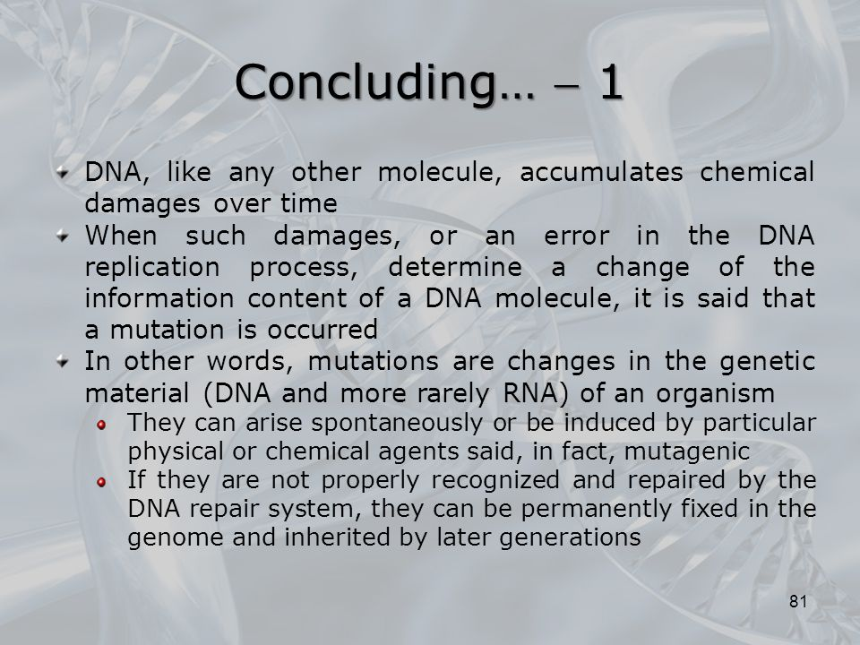 Concluding…  1 DNA, like any other molecule, accumulates chemical damages over time.