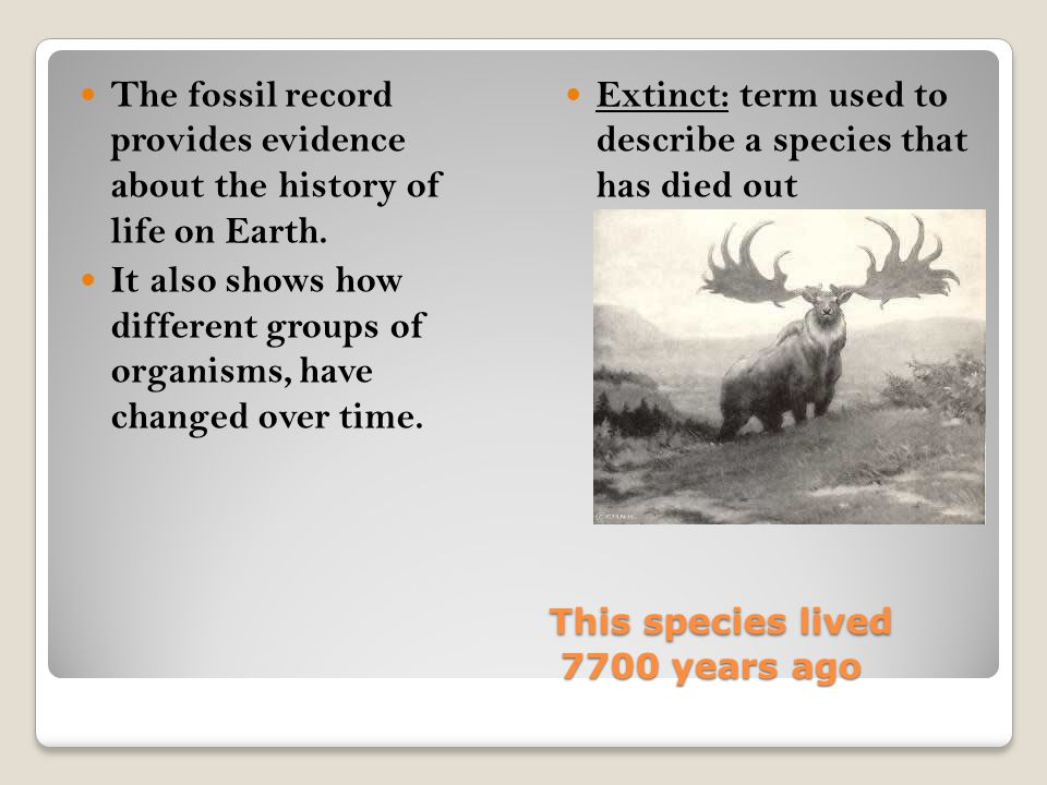 This species lived 7700 years ago