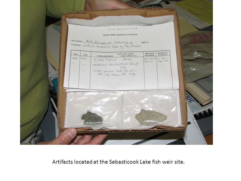 Artifacts located at the Sebasticook Lake fish weir site.