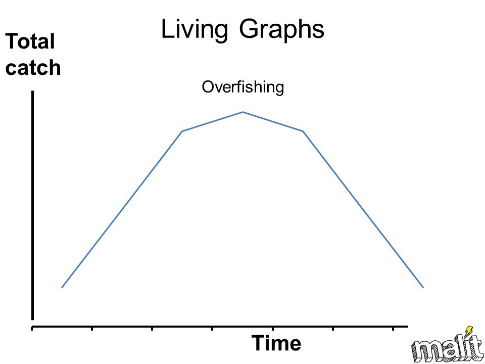 Living Graphs Overfishing