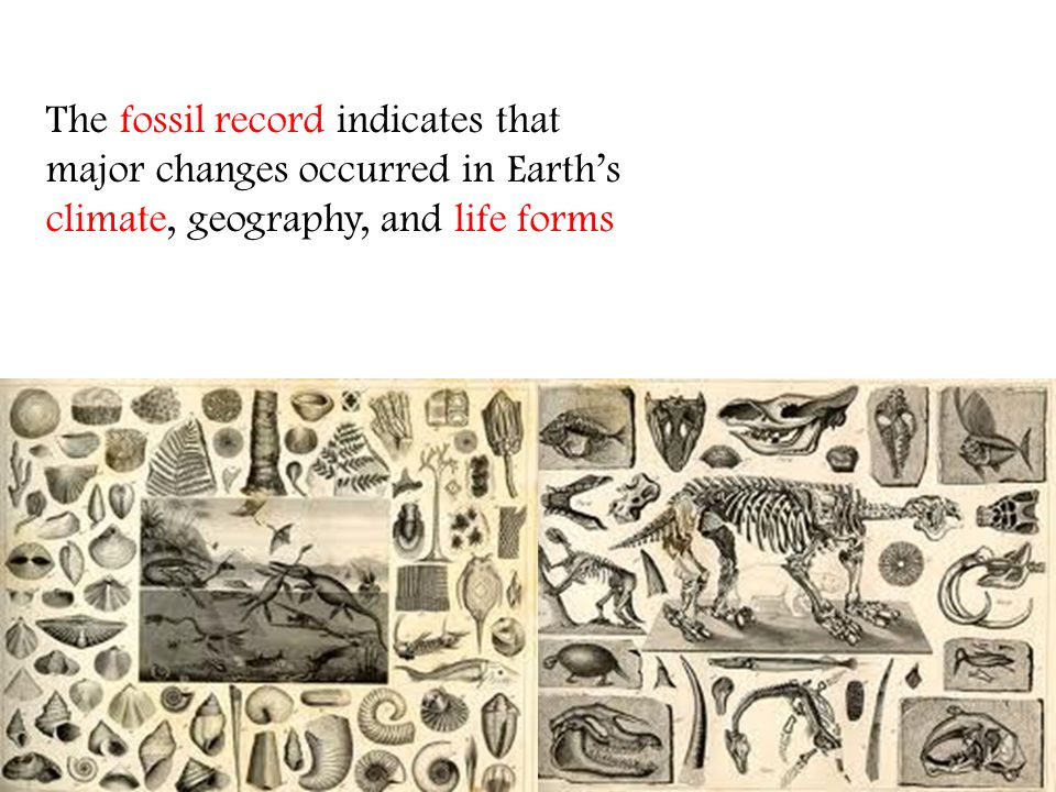 The fossil record indicates that major changes occurred in Earth's climate, geography, and life forms
