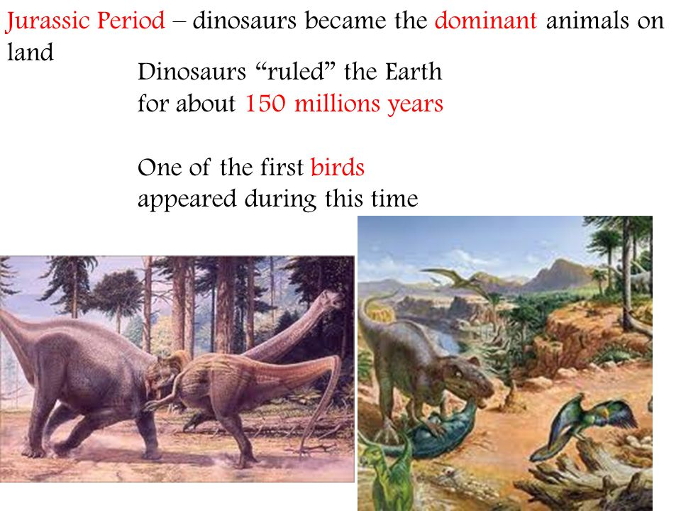 Jurassic Period – dinosaurs became the dominant animals on land
