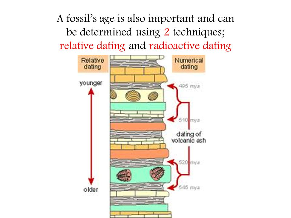 radioactive dating compared to relative dating