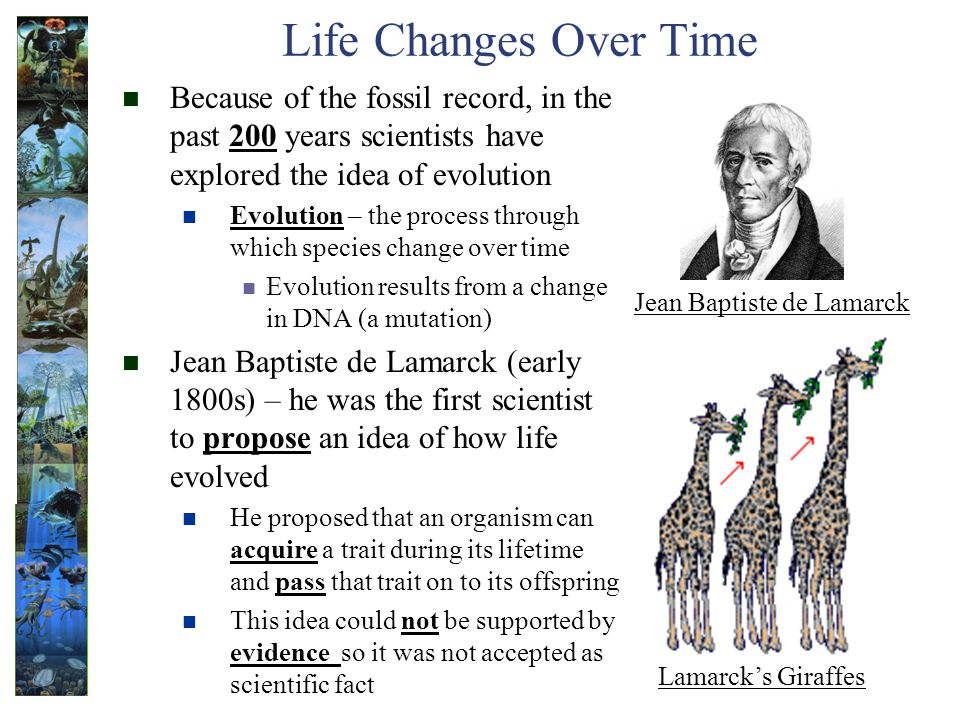 Life Changes Over Time Because of the fossil record, in the past 200 years scientists have explored the idea of evolution.