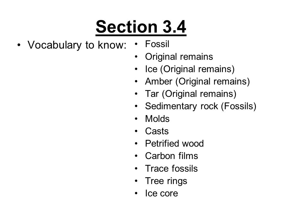 Section 3.4 Vocabulary to know: Fossil Original remains