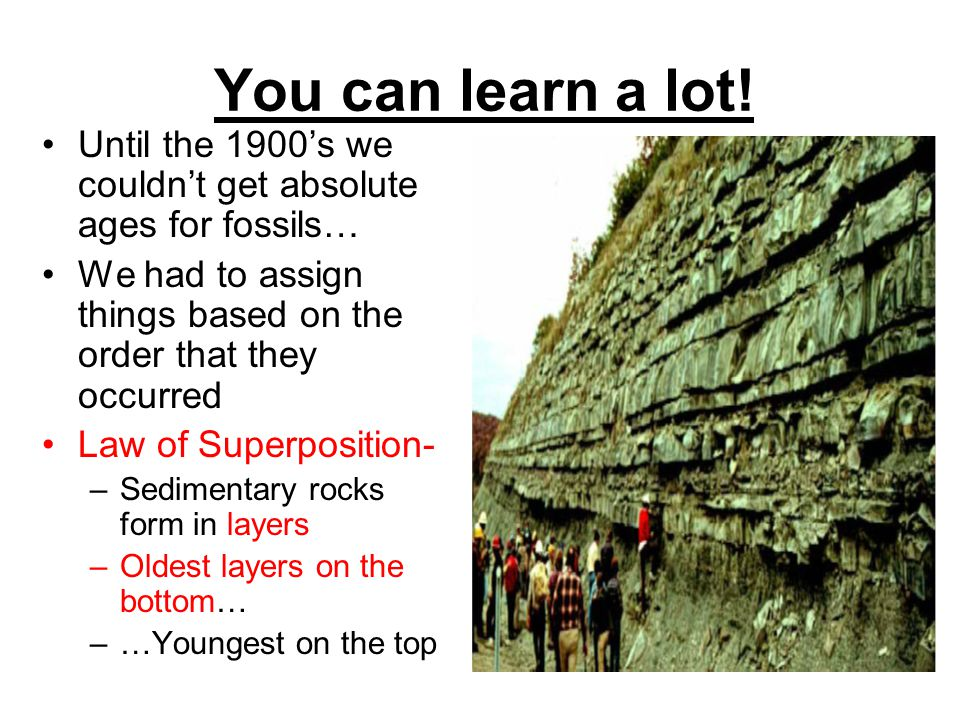 You can learn a lot! Until the 1900's we couldn't get absolute ages for fossils… We had to assign things based on the order that they occurred.