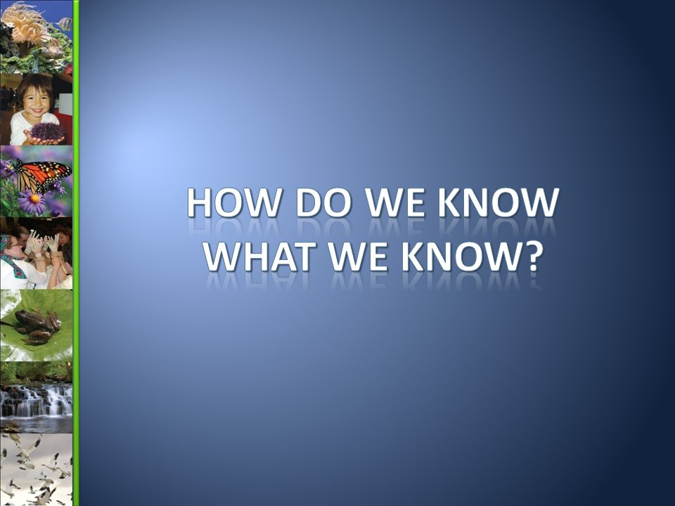 How Do We Know What We Know