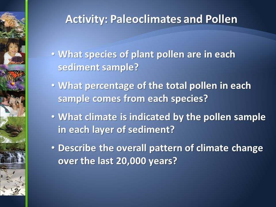 Activity: Paleoclimates and Pollen