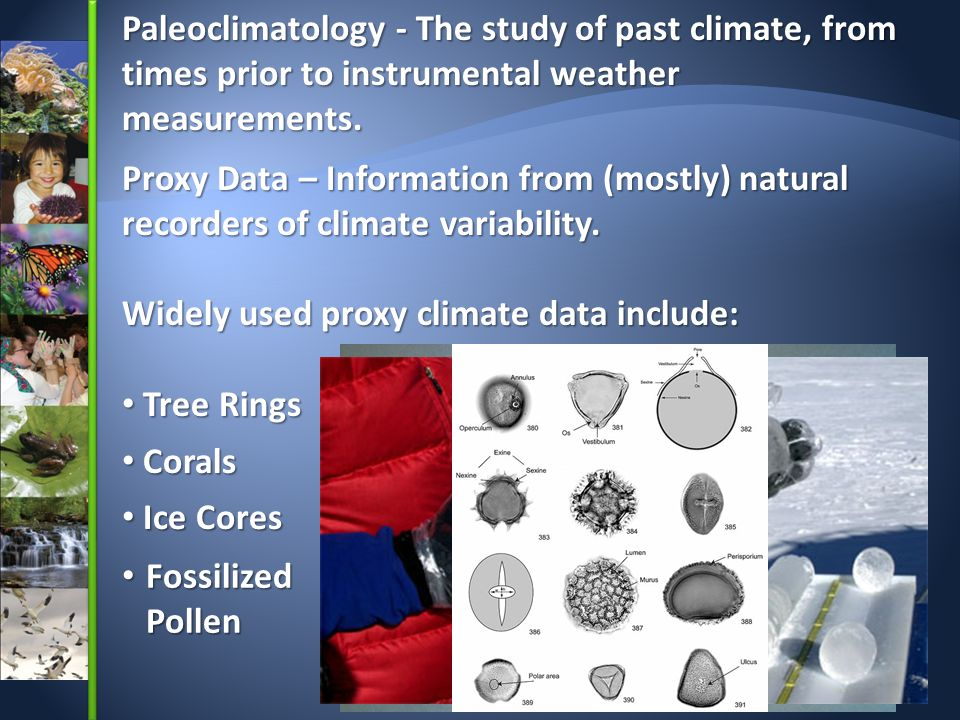 Widely used proxy climate data include: