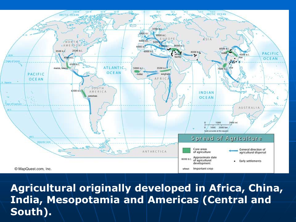 Agricultural originally developed in Africa, China, India, Mesopotamia and Americas (Central and South).