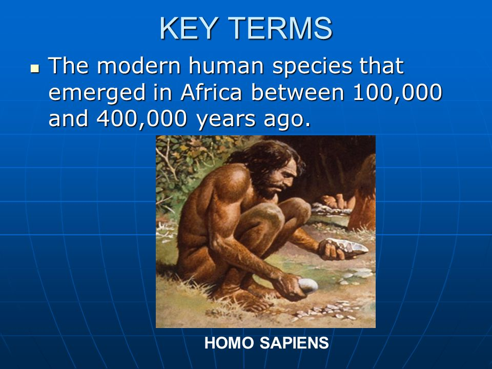 KEY TERMS The modern human species that emerged in Africa between 100,000 and 400,000 years ago.