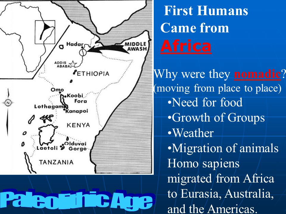 First Humans Came from Africa Paleolithic Age Why were they nomadic