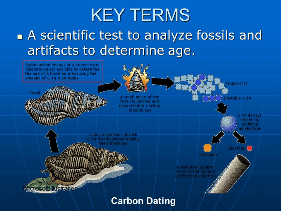 KEY TERMS A scientific test to analyze fossils and artifacts to determine age. Carbon Dating