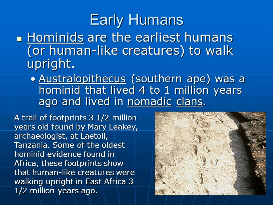 Early Humans Hominids are the earliest humans (or human-like creatures) to walk upright.