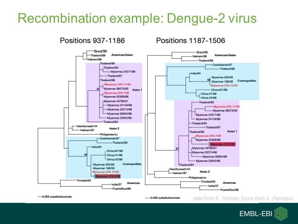 Recombination example: Dengue-2 virus