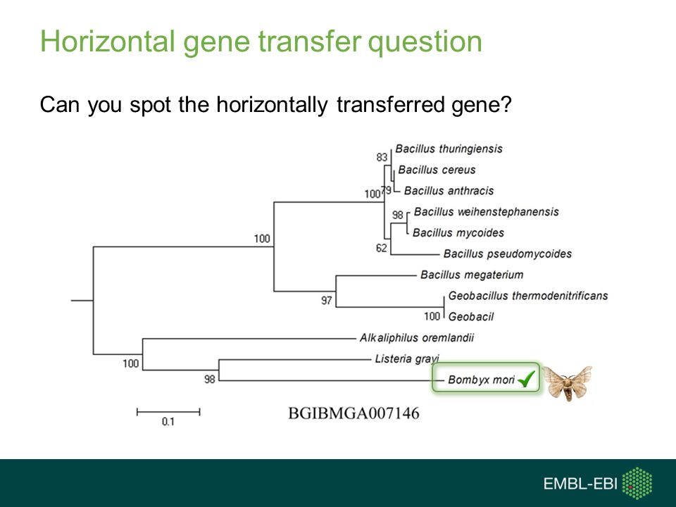Horizontal gene transfer question