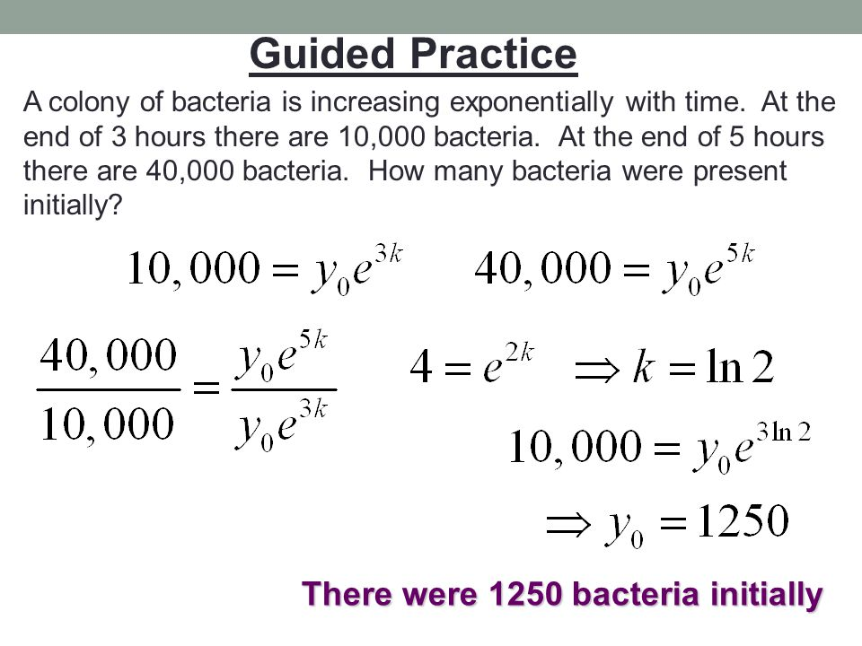 There were 1250 bacteria initially