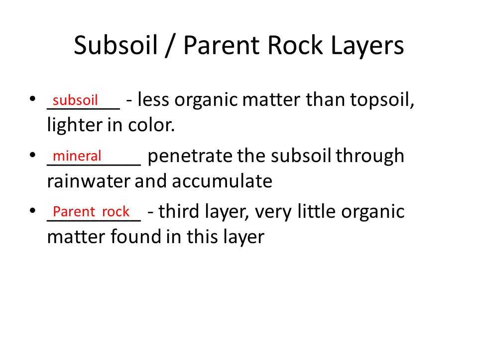 Subsoil / Parent Rock Layers
