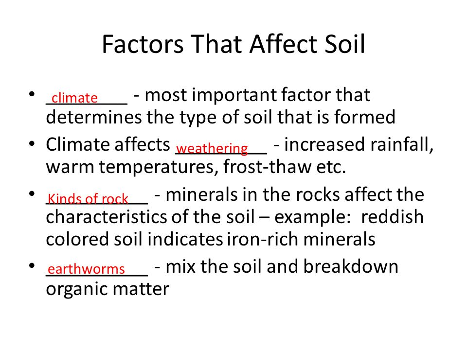 Factors That Affect Soil