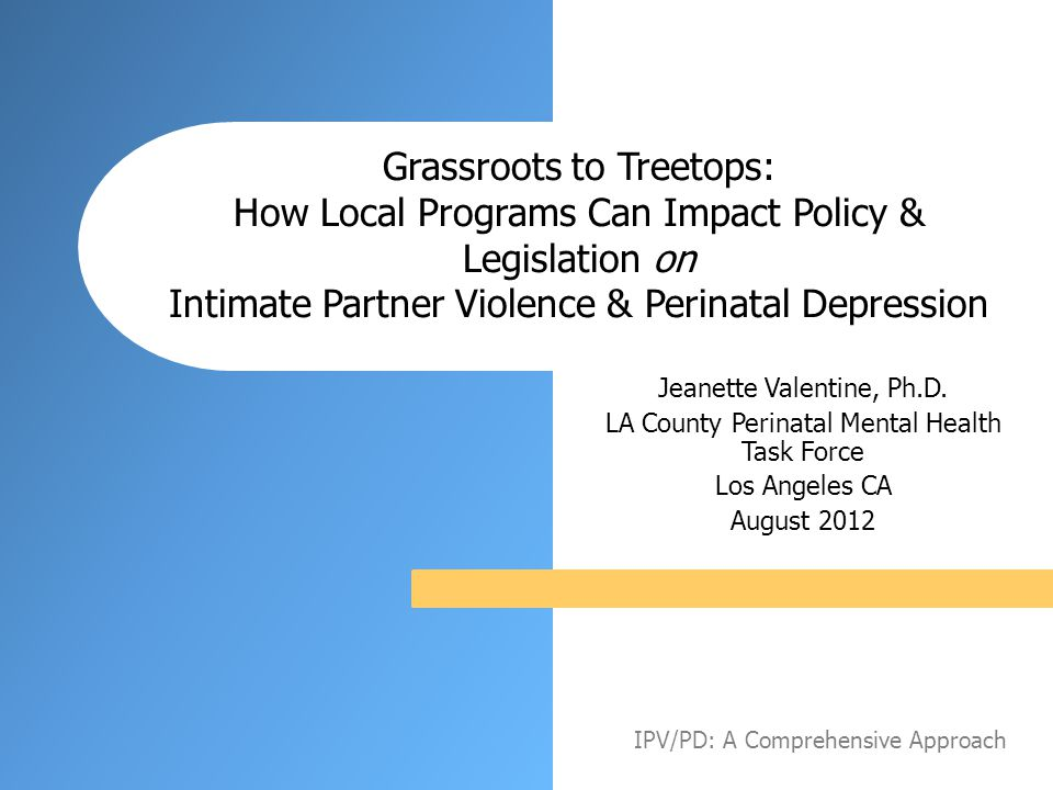 Grassroots to Treetops: How Local Programs Can Impact Policy & Legislation on Intimate Partner Violence & Perinatal Depression